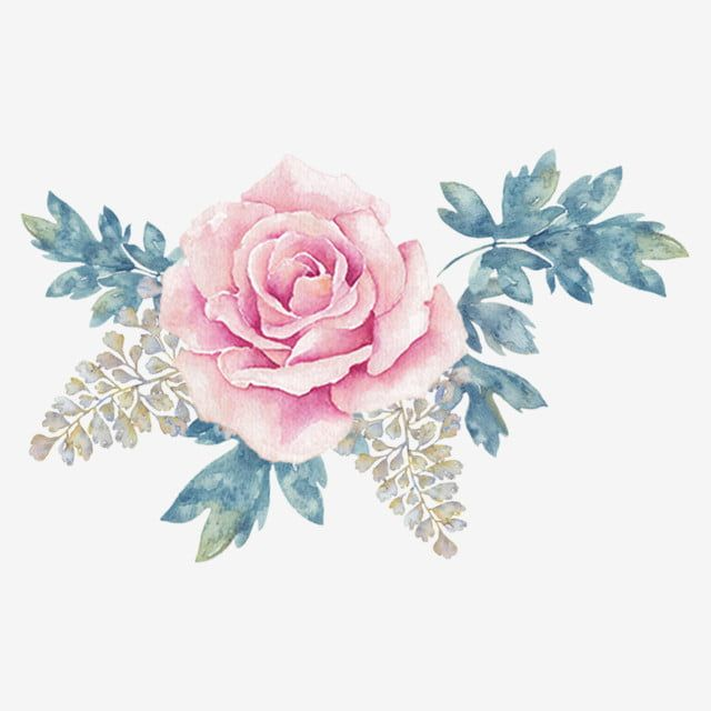 Watercolor Flower Decoration Png Free Illustration Light Pink Flowers Leaves Png Transparent Clipart Image And Psd File For Free Download Cvety Akvarelyu Cvetochnye Fony Illyustracii