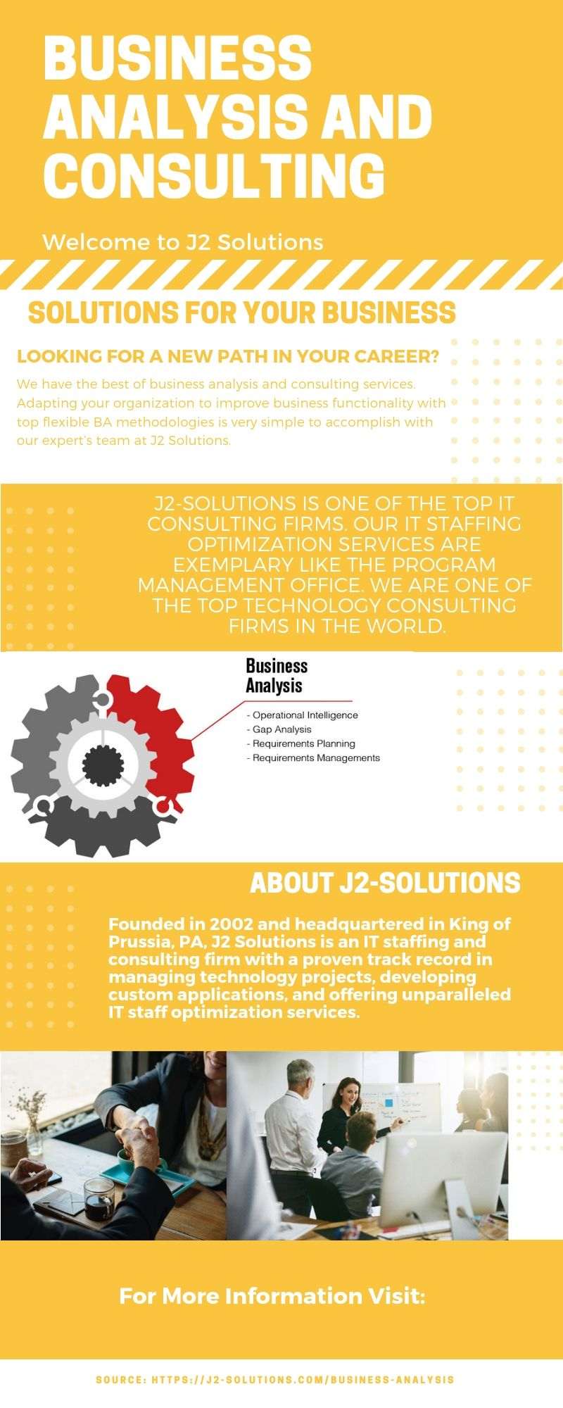 IT Business Analysis and Consulting Business analysis