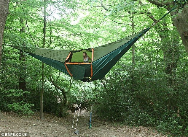 To camp in a tent in the trees