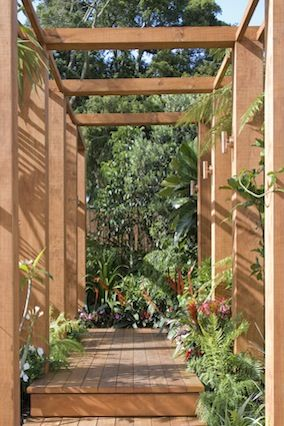 Textures Emphasize Depth As a counterpoint to the broad-leafed tropical, intersperse finer, more feathery foliage, like that of the dwarf Japanese maple, along with ferns and variegated grasses.  Read more: http://www.oprah.com/home/Backyard-Decorating-Tips-Patio-Design-Ideas/8#ixzz2RJlnBB1I