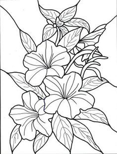 This may be his own drawings or could be pages of any coloring book ...