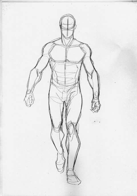 Reference Walk Drawing Reference Poses Figure Drawing Poses Anatomy Sketches