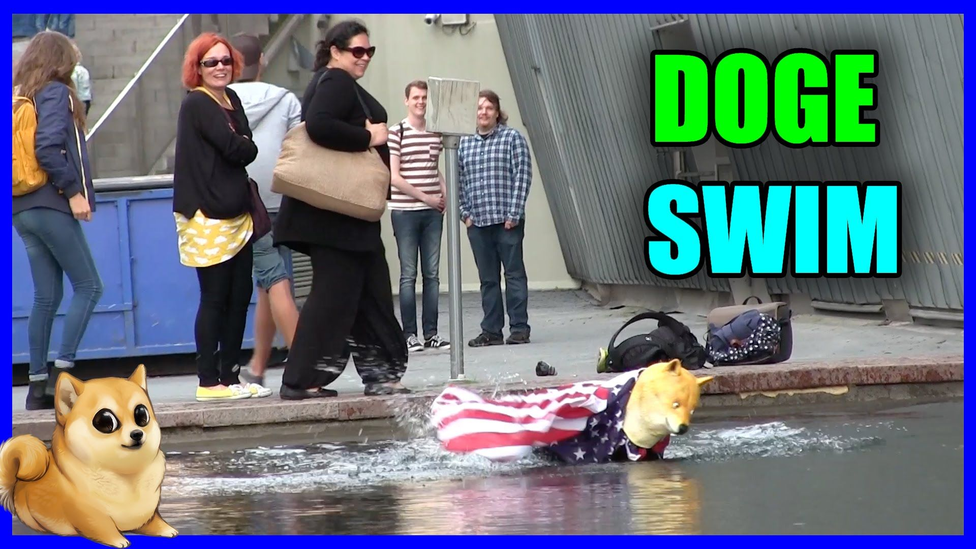 Doge Goes Swimming Wwwyoutubecommairoutv #Doge #Dog #