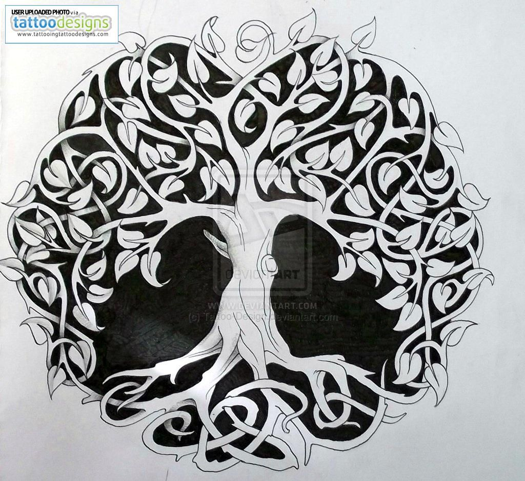 Tree of life tattoos for women tattooing free download tattoo tree of life tattoos for women tattooing free download tattoo 25855 celtic tree buycottarizona Gallery