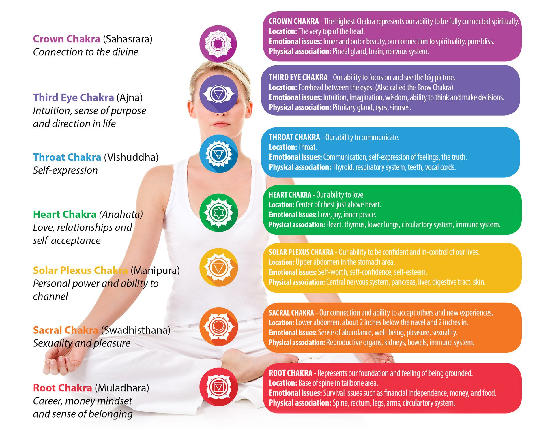 Seven Chakras in our body or integrated energy centers ...