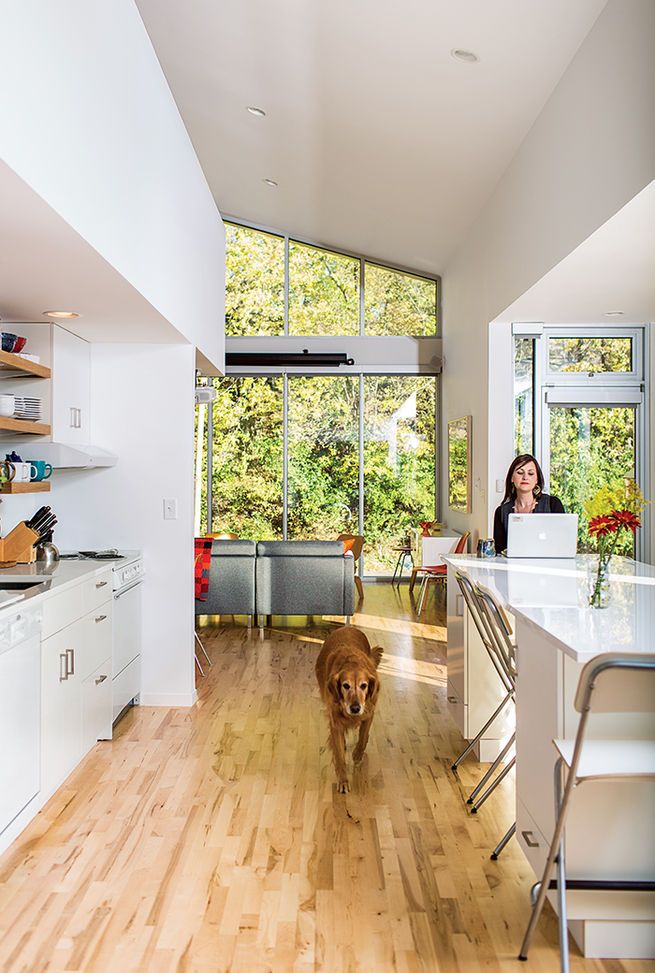 Magill and Copa, her golden retriever, relax in the kitchen, where an eco-quartz-topped island can be used as a dining table—one of the home's many adaptable features. The Akurum cabinets and handles are from Ikea, as are the Franklin folding bar stools. Photo by: Narayan Mahon