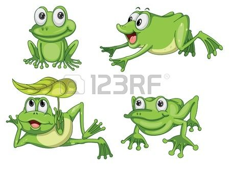 gedetailleerde illustratie van groene kikker op een witte achtergrond