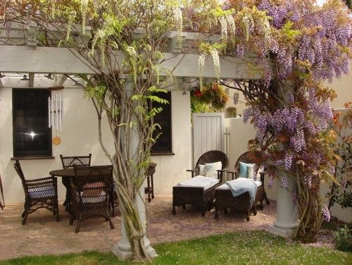 Wisteria Trellis Porches And Patios Garden Seating