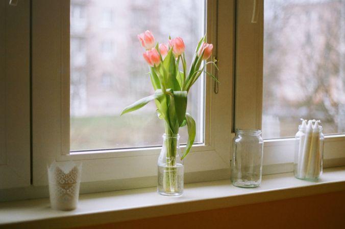 tulipany_na_okne