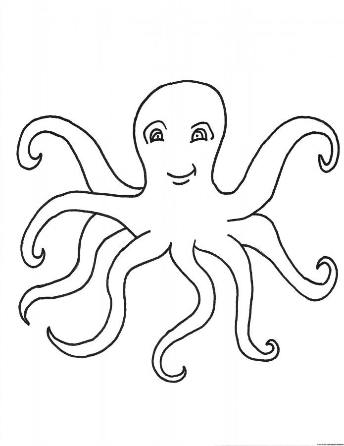 photograph relating to Printable Octopus named Totally free Printable Octopus Coloring Web pages For Young children Coloring