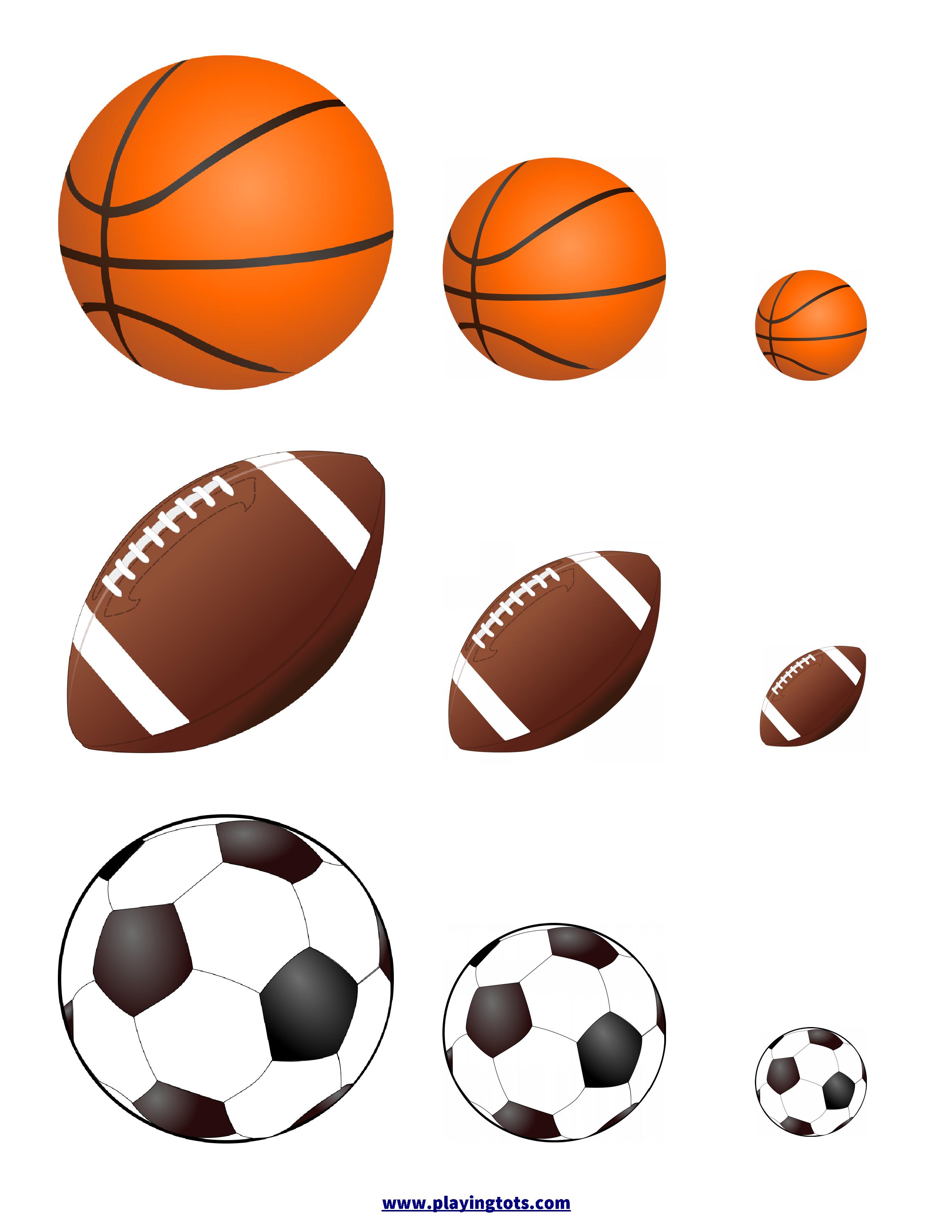 Sort Balls By Size Keywords Activity Toddler Sport Fun