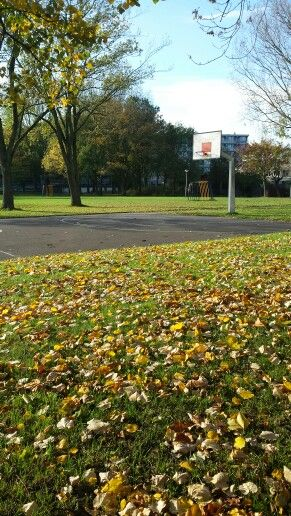 Nothing is better then an autumn's sunny day :)