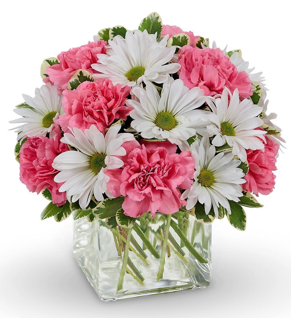 Daisy Dreams Bouquet   Flowers   Pinterest   Flowers