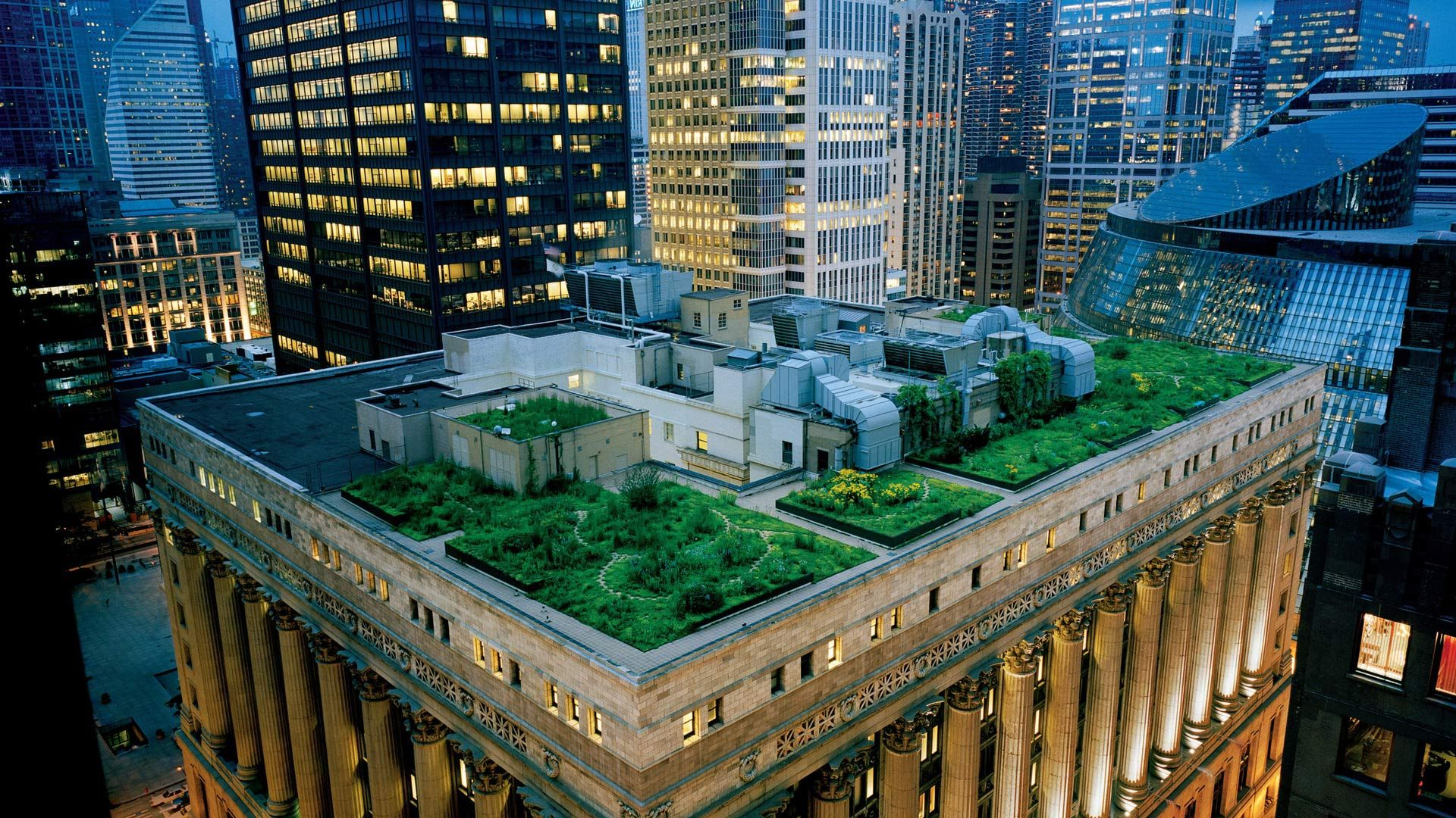 Roof Garden Rooftop Garden Places In Chicago Chicago City
