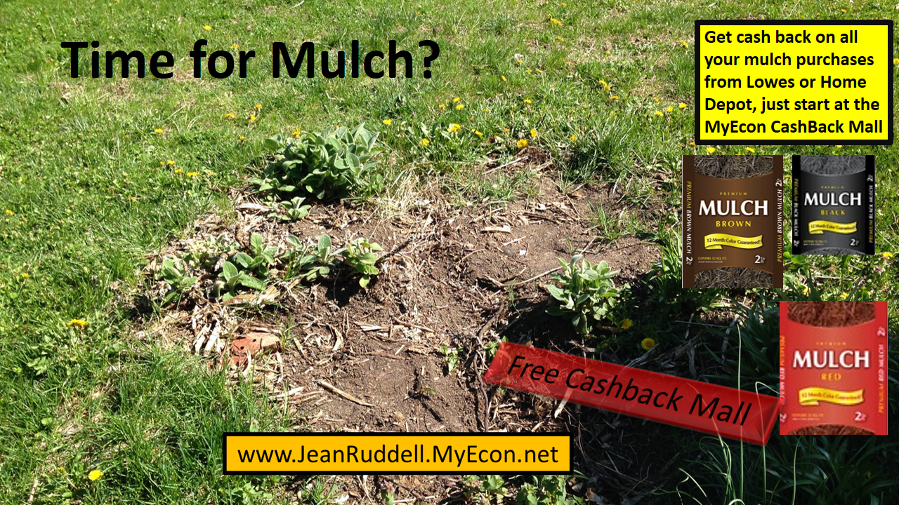 You can get cash back on all of your gardening needs if
