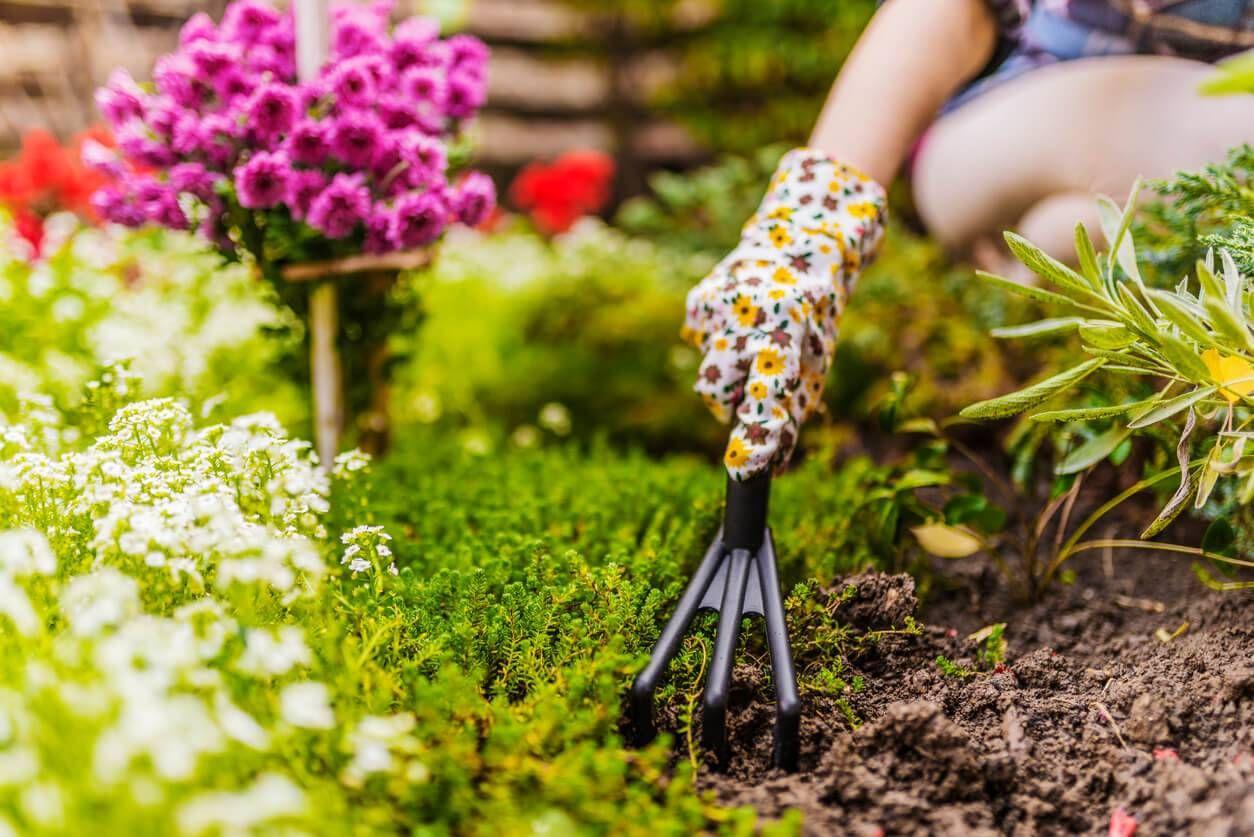 4 travaux à réaliser pour préparer son jardin pour le