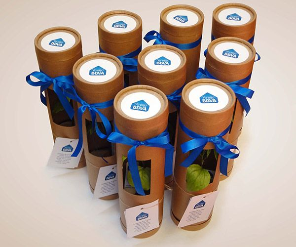The Growing Gift - Regalos empresariales …   Everything ...
