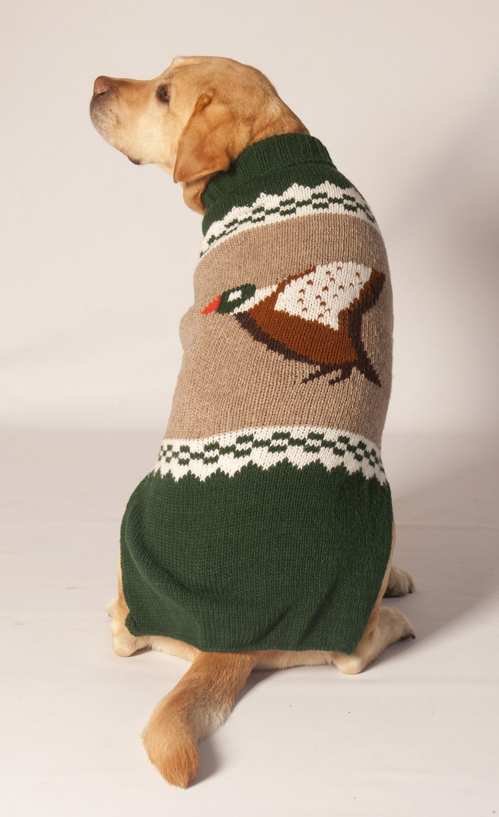 3b8fbb119d1e Handmade - Novelty Mallard Duck Dog Sweater | Yarns only! | Chilly ...