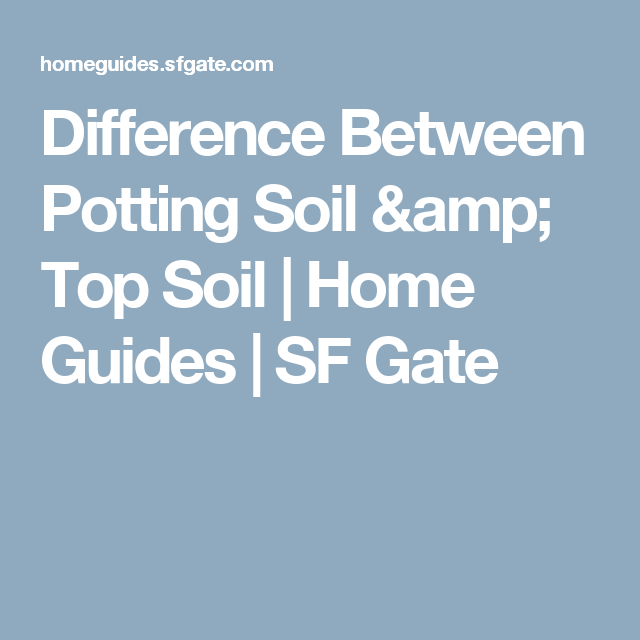 What Is The Difference Between Garden Soil And Potting Soil Garden Ftempo