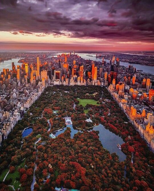 Central Park Apartments New York: Central Park. New York City. Apartment & Home Hunting App