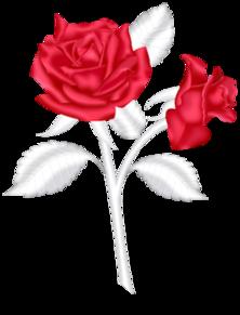 glitterdoll — «roses.png» на Яндекс.Фотках