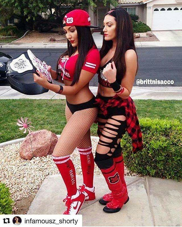 Wwe Nikki & Brie Bella   Nikki and brie bella, Nikki bella costume, Wwe costumes