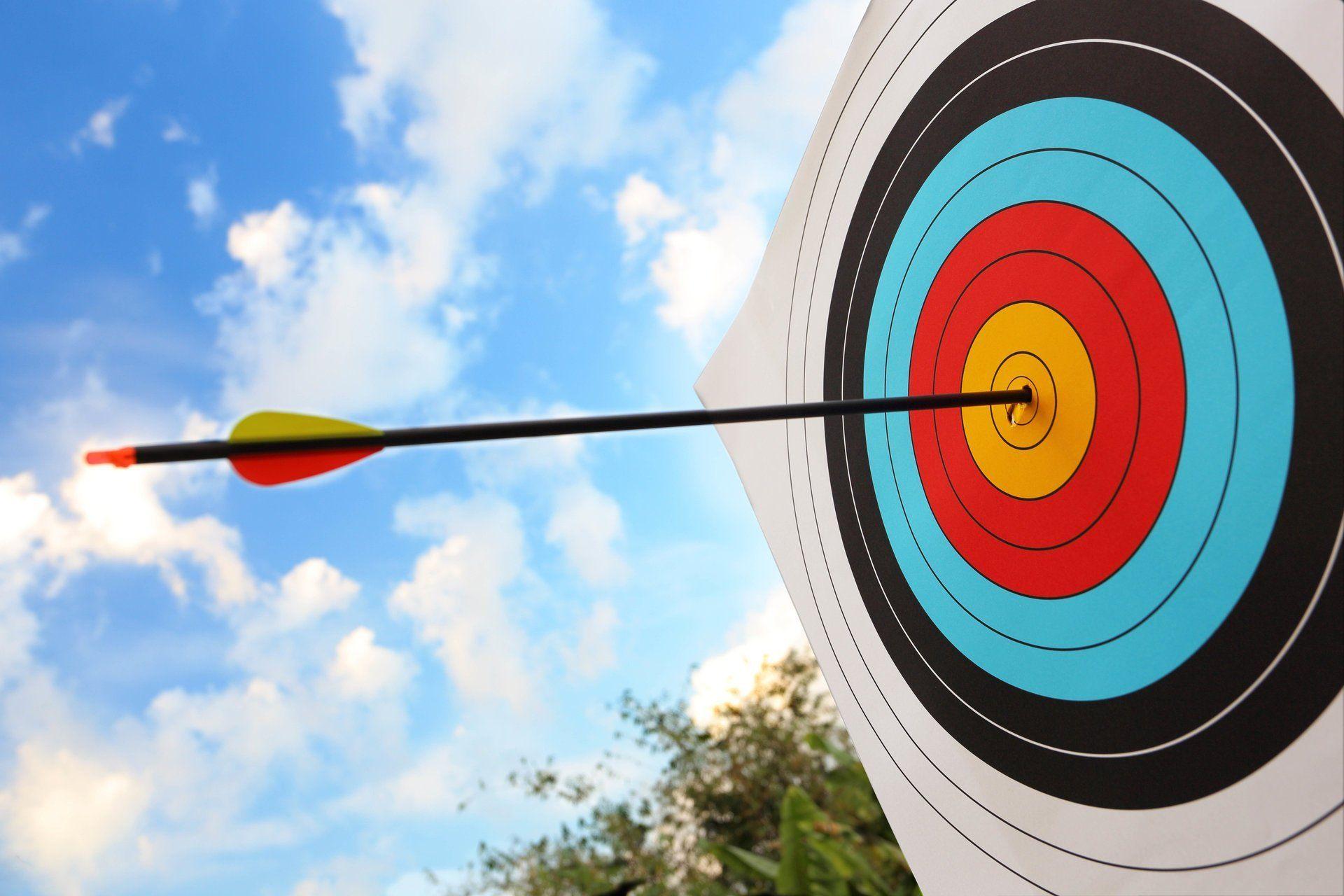 BULL'S EYE! Animal Catch Phrases Archery hunting