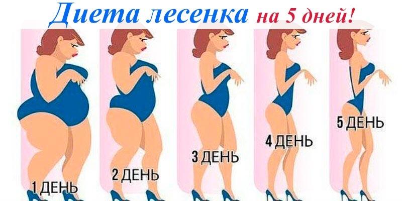 Диета Лесенка Меню На 5 Дней Подробно. Чудо-диета «Лесенка»: простые ступеньки здоровья и меню на 5 дней