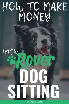 I honestly had NO idea that you could make that much money from Rover dog sitting! I SO BADLY want more dogs but I know my husband will never go for it...this might be just the thing I need to have more dogs in my life without having more dogs in my life haha! #Rover #DogSitting #SideHustle #MakeMoneyOnline #DogTips #DogLovers