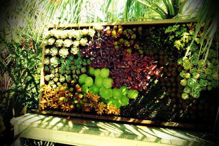 Vertical Gardening Ideas Pinterest Photograph Vertical