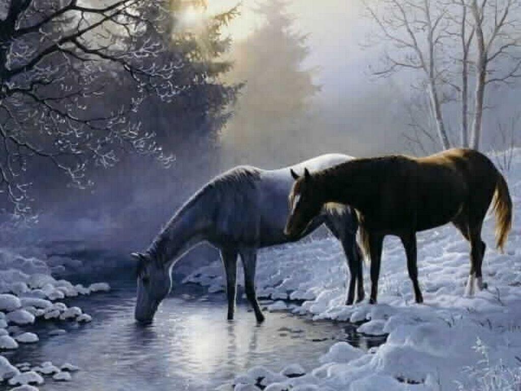 Fonds D Ecran Chevaux Art A Theme Cheval Painted Horses Cheval