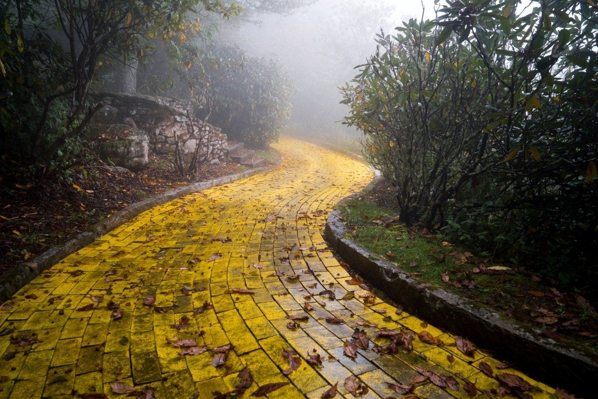 North Carolina's Abandoned 'Wizard of Oz' Theme Park Will