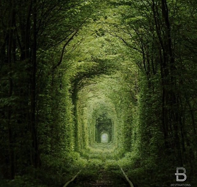 The tunel of love