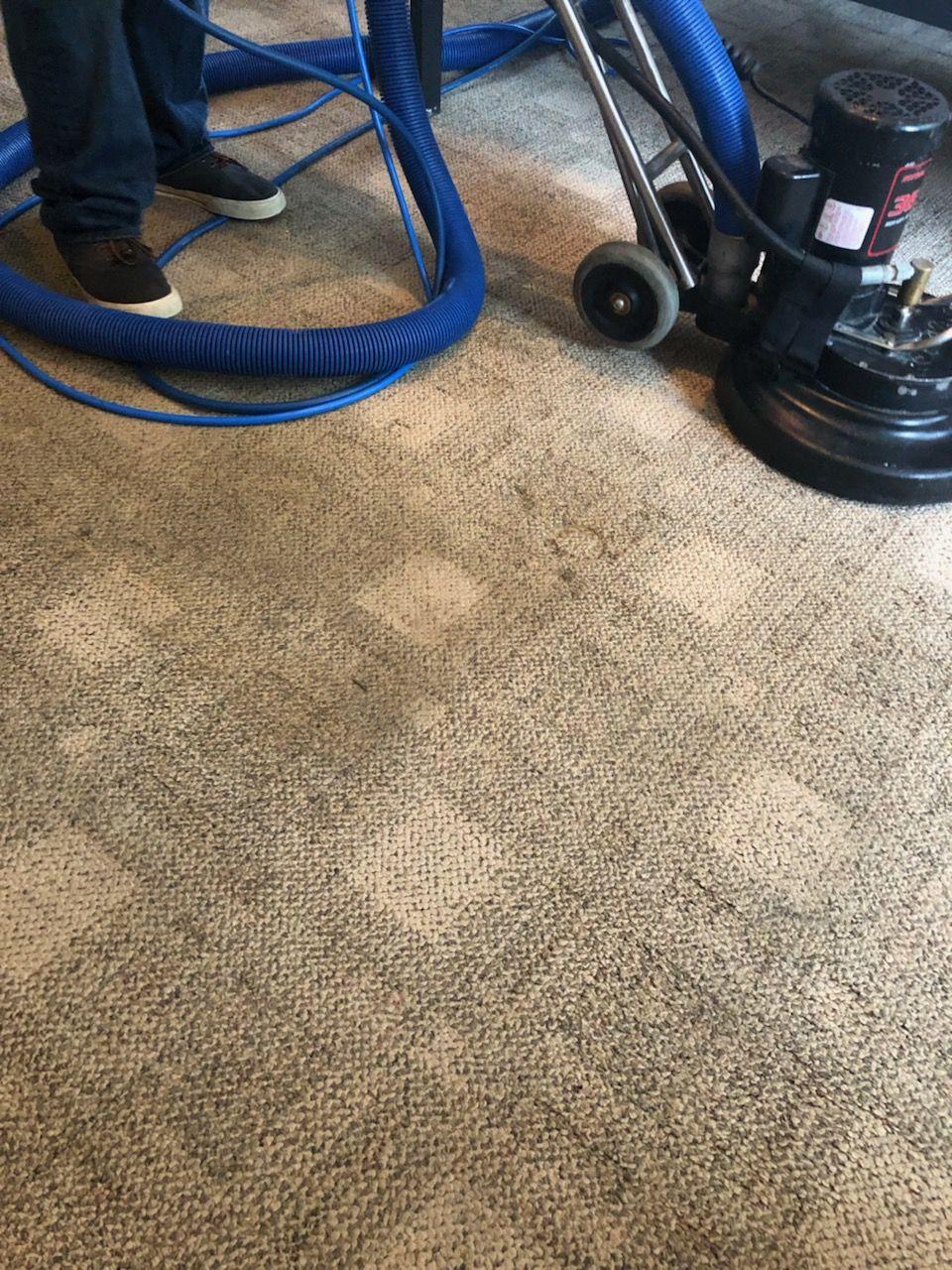 Carpet Restoration In Memphis Tn Carpet Steam How To Clean Carpet Carpet Cleaning Company