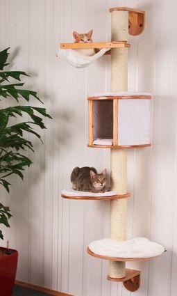 klösträd till katt