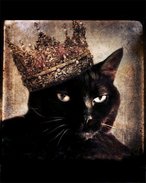 Queen Black Cat Art Wearing A Crown Pet Portrait Gift For Cat Lovers