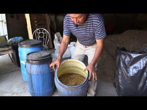 Fertilizante De Frutas Youtube Abonos Para Plantas Abono Natural Para Plantas Huerta En Cajones