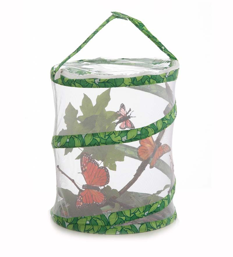 "Insect Lore Live Butterfly Garden Shipped with 3-5 Caterpillars, 12"" Netted Pavilion"