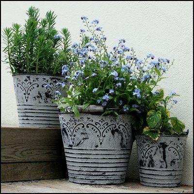 Vintage Metal Bucket Planters Shabby Chic Garden Metal Bucket Planters Shabby Chic Garden Decor