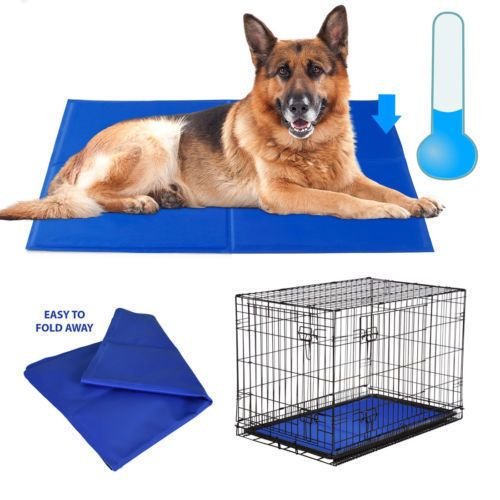Rosewood Chillax Dog Cool Cooling Mat Pad Bed Hot Weather Hot Spots Travel Ho Rosewood Hot Spot Chillax Hot Weather