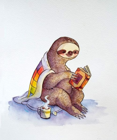 Love the idea of a sloth doing something else - zip line sloth for florida!!!!?