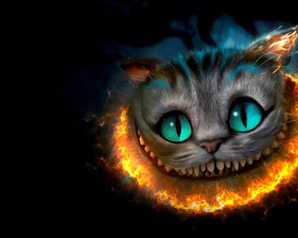 Imagenes De Gatos En 3d Para Fondo De Pantalla Fondos De Gato