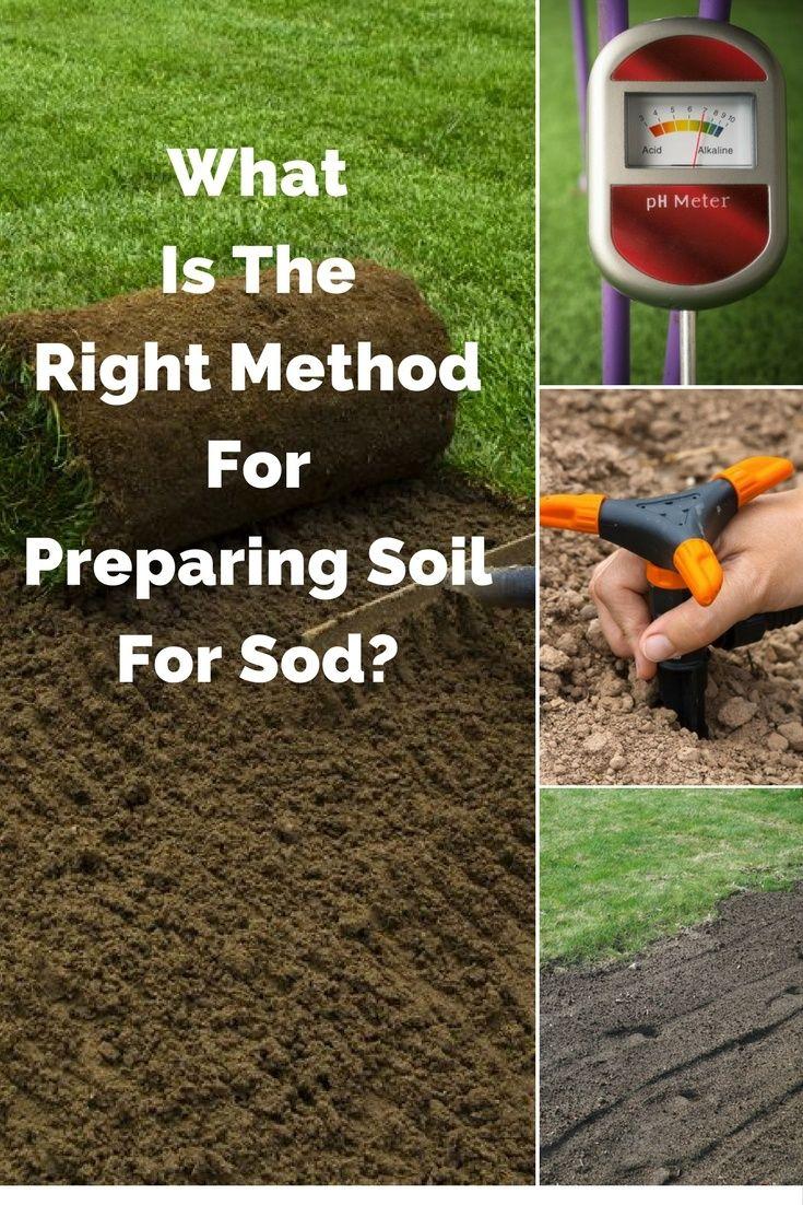 What Is The Right Method For Preparing Soil For Sod Garden Soil Organic Gardening Pest Control Soil