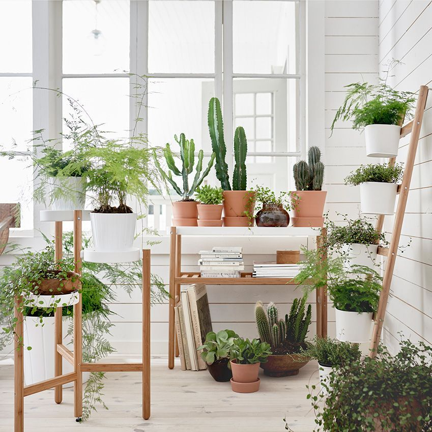 Style Up An Indoor Garden With The New Satsumas Range By Ikea