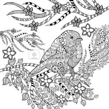 zwart wit vogels: tropische vogel   volwasssenen kleurplaten   Pinterest