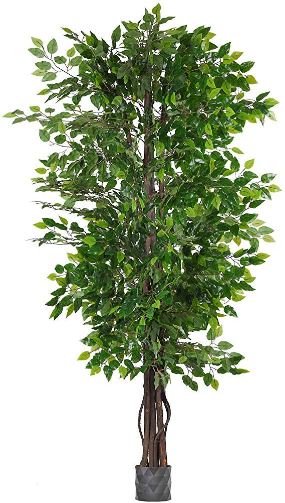 Amazon Com Woooow 6 5 Feet Ficus Silk Tree Artificial Tree Ficus Tree With Green Leaves And Natural Trunk Beau In 2020 Living Room Plants Fake Plants Artificial Tree