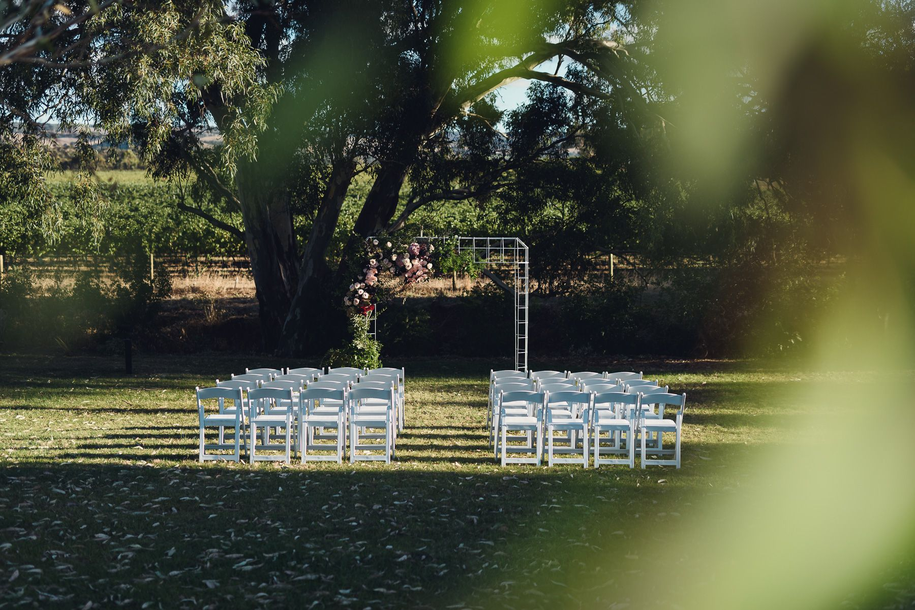 Pin By Mitolo Wines On Weddings At Mitolo Wines Outdoor Decor