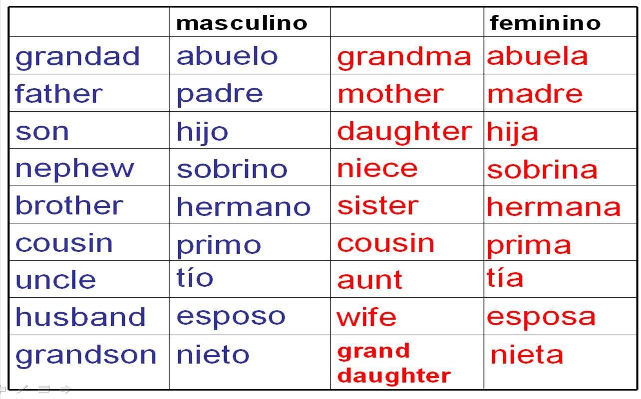 Deberes Vocabulario La Familia Homework Family Vocab