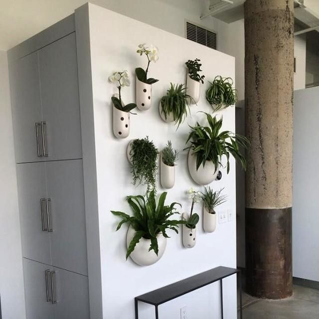 Shane powers ceramic wall planter large circle planters for Indoor wall planters ikea