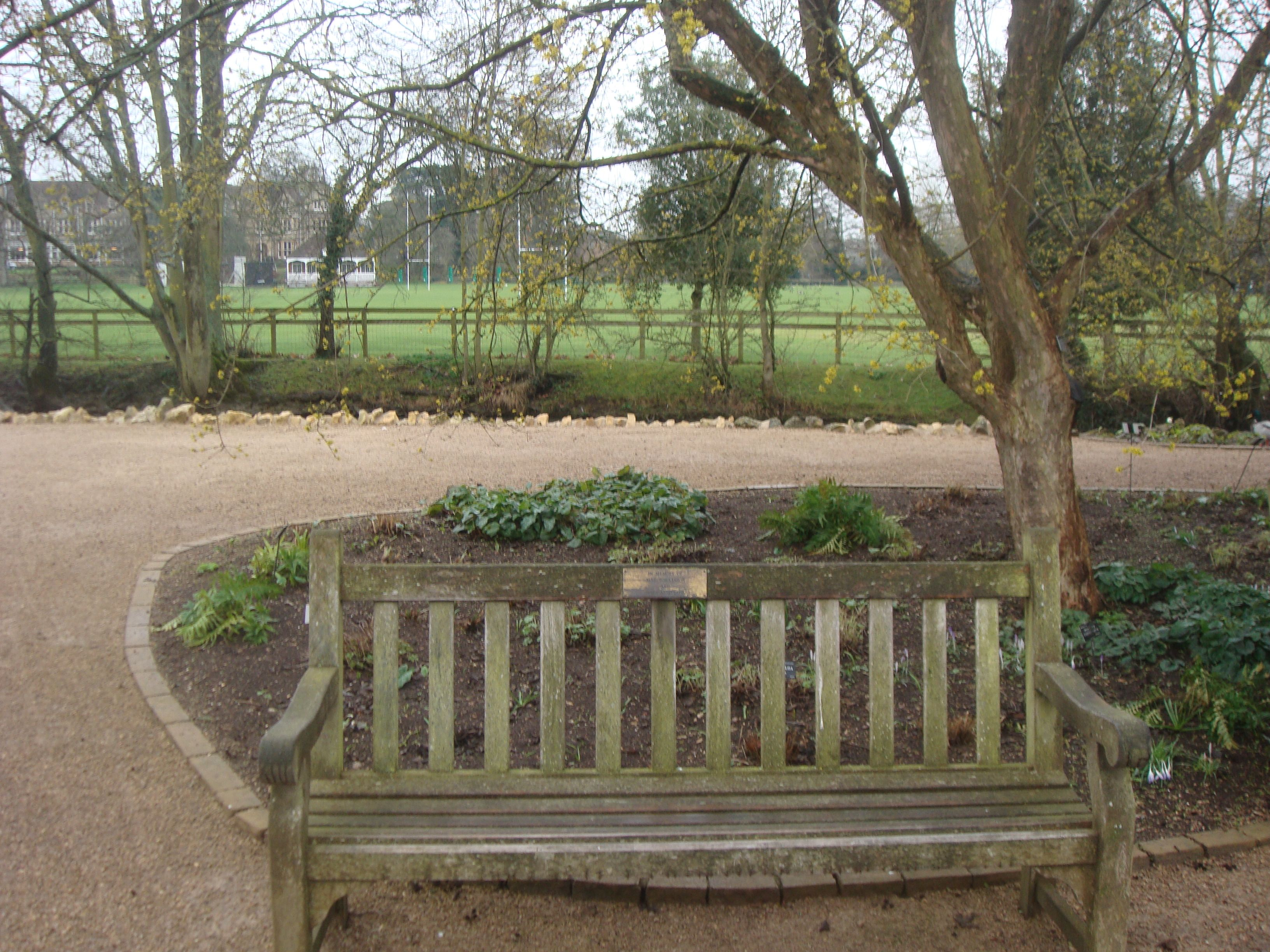 Will and Lyra\'s Bench (from The Amber Spyglass by Philip Pullman ...